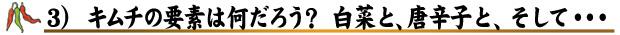 3) キムチの要素は何だろう? 白菜と、唐辛子と、そして・・・